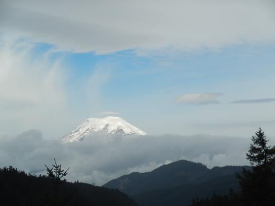 Le mont Rainier s'élève à 4392 mètres.