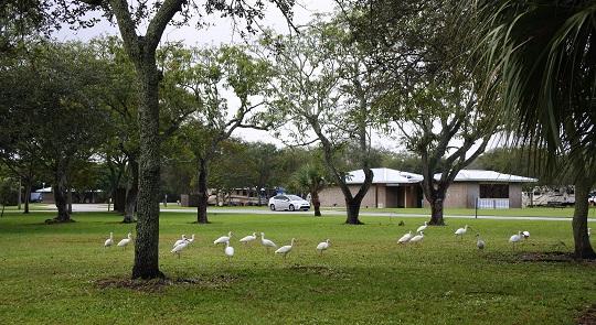 Le Larry and Penny Thompson est un beau parc de comté, où les sites, bien aménagés et pas trop chers, sont regroupés en boucles.