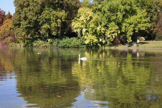 Le bois de Vincennes, avec ses 995 acres, est le plus grand espace vert de Paris.